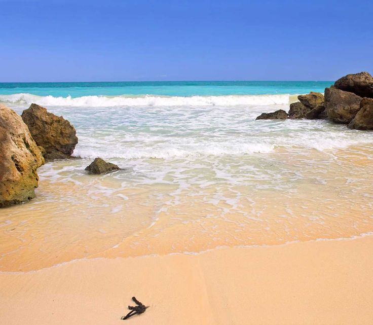Sandy Beach: 56 Best Just Because Images On Pinterest