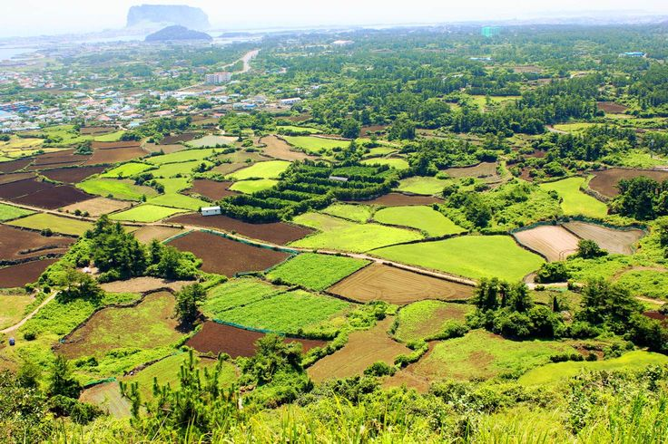 Vast views of the Jeju countryside from the Olle trail. Image by Rob Whyte / Lonely Planet