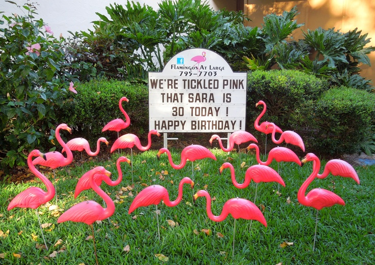 28 Best Birthday Lawn Signs Images On Pinterest Lawn