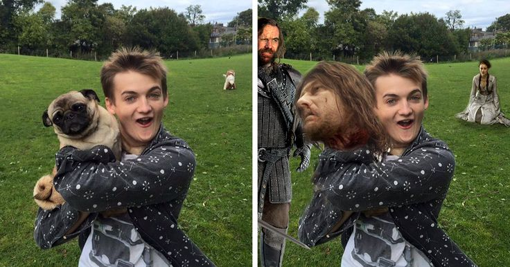 King Joffrey Hugs A Pug, And Sparks A Brutal Photoshop Battle