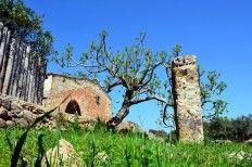 """Il Menhir """"Ninfeo"""" di Felline (Salento - Puglia - Italy)"""