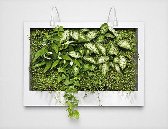 Greenworks living wall installations