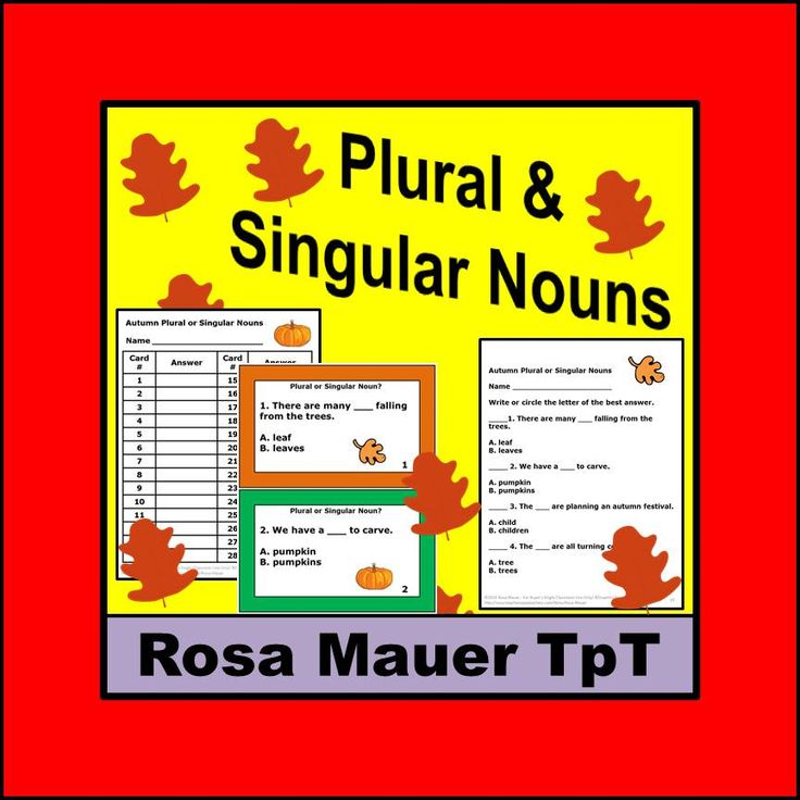 Autumn Plural or Singular Nouns: Choose the noun that will make each sentence correct.