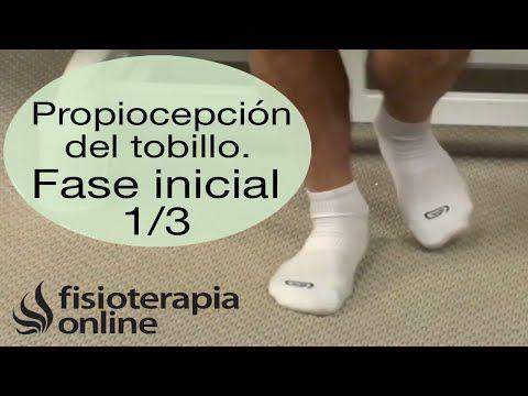 M Ejercicios Propioceptivos para fortalecer el tobillo. Propiocepción de tobillo nivel medio | Fisioterapia Online