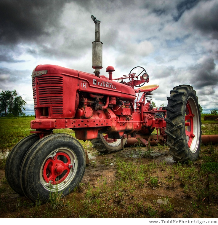 Red Farmall Tractor - Rural Art - by Todd McPhetridge