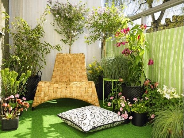 The grow tents are the best option to set up a garden inside the apartments. Even a relatively small area or 2 sq ft area is fine enough for a small garden. The complete grow tents are a blessing that comes with not just the tent but also the required equipments and accessories needed to set up a garden. Indoor gardening..........