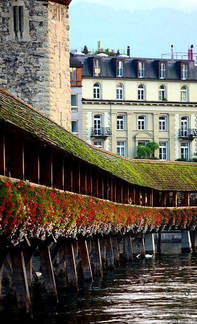 Lucerna Suiza, Switzerland (by Dena Flows on Flickr)