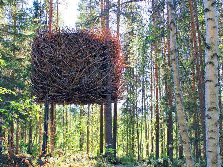 Treehotel, Scandinavia