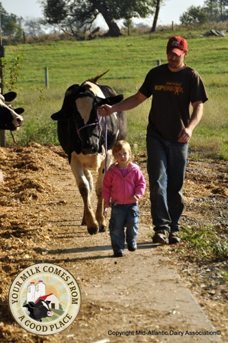"""Families Working Together-  """"Raising kids on a dairy farm is a wonderful. Both parents are involved in their lives. It teaches them responsibility and they are a big help on the farm,"""" says the Seller family from Pa."""