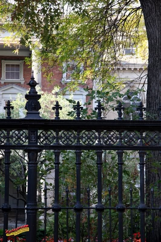 Ornate wrought iron fence