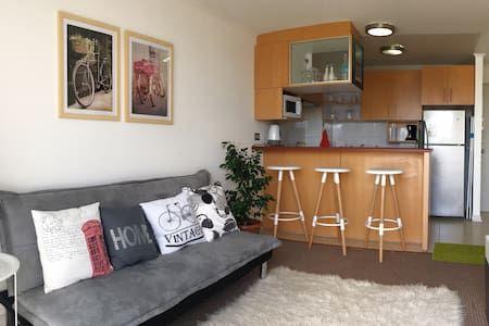 Échale un vistazo a este increíble alojamiento de Airbnb: Precioso departamento en Valparaiso - Departamentos en alquiler en Valparaíso