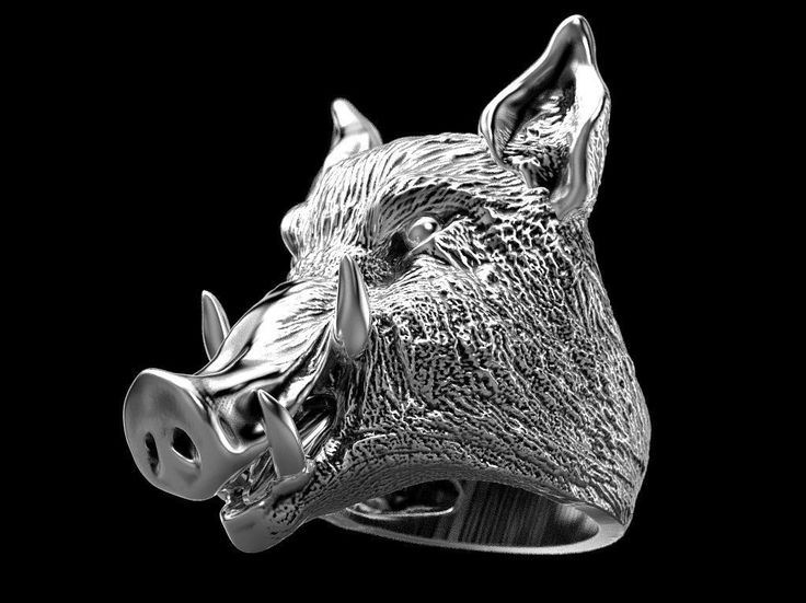 boar ring  3d model stl 1