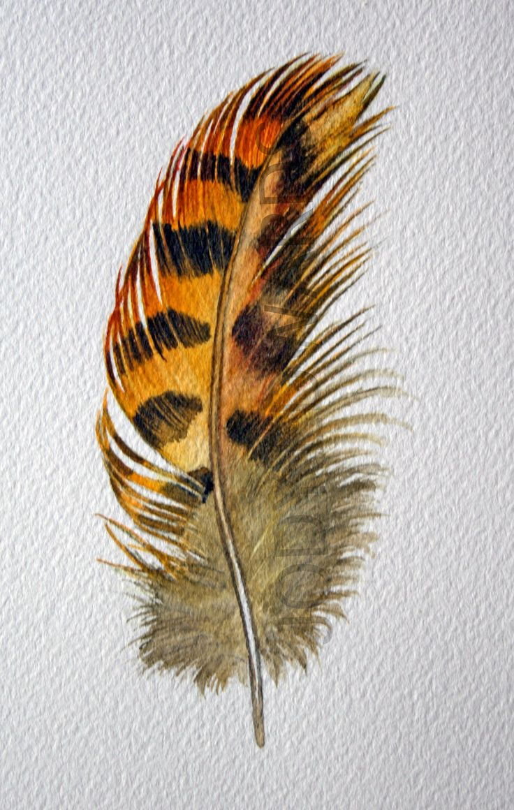 Feather Painting Roughed Grouse feather Nightly от jodyvanB