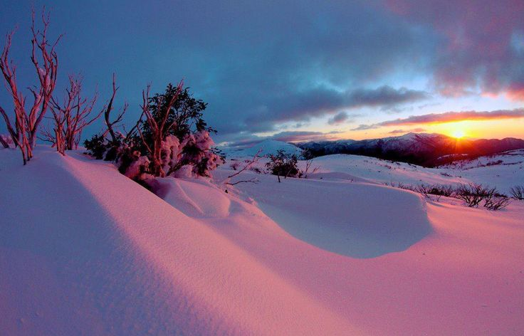 Snow Australia - Falls Creek snow resort in Victoria, Australia #snowaus