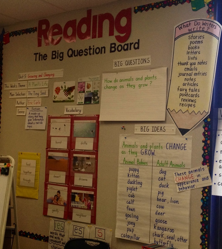 Bulletin Board Ideas For Questions: 8 Best Big Question Board Images On Pinterest