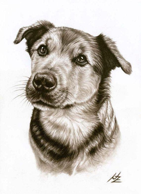 Dogs Eyes Kunstdruck A3 von ArtsandDogs auf Etsy, € 19.00