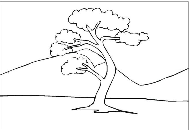 coloring pages com free 45 best images about mural on pinterest