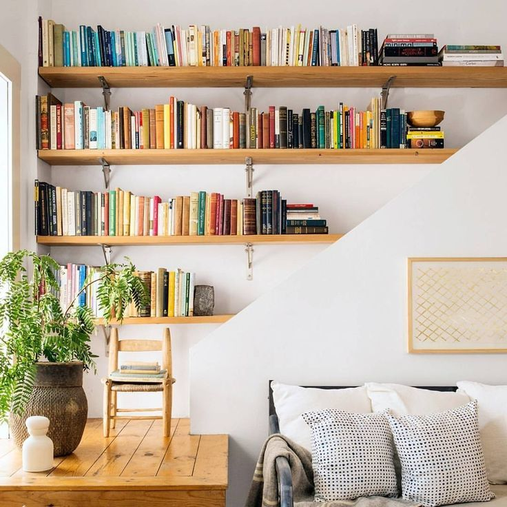 Books in a wooden shelf and a big plant
