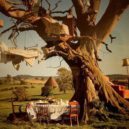 whimsicalBeds, Dreams, Outdoor Living, Tree Houses, Alice In Wonderland, Timwalker, Trees House, Tim Walker, Teas Parties