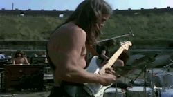 my pink floyd echoes david gilmour Live At Pompeii pinkfloyd
