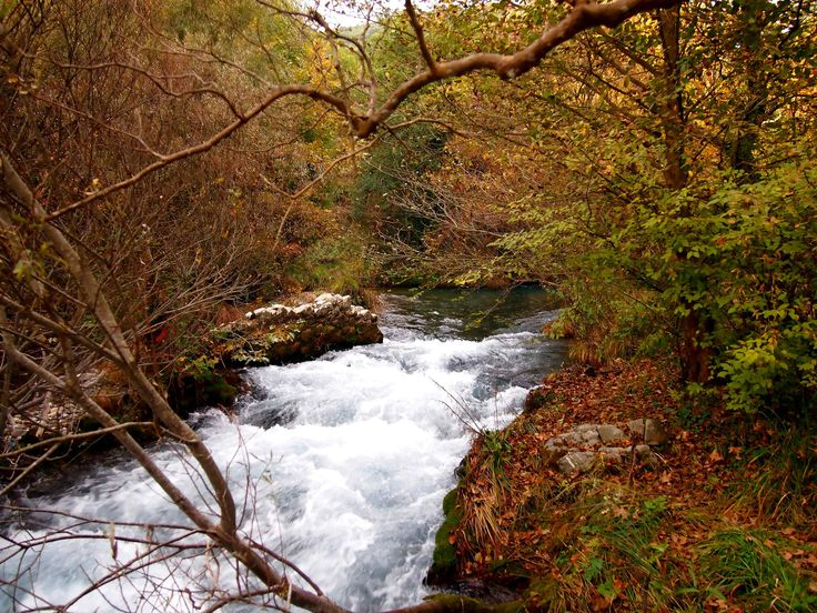 https://flic.kr/p/jsHECV   Arcadia - Lousios River (3)   The Lousios  is a river and a gorge in western Arcadia that stretches from Karytaina north to Dimitsana in Greece.