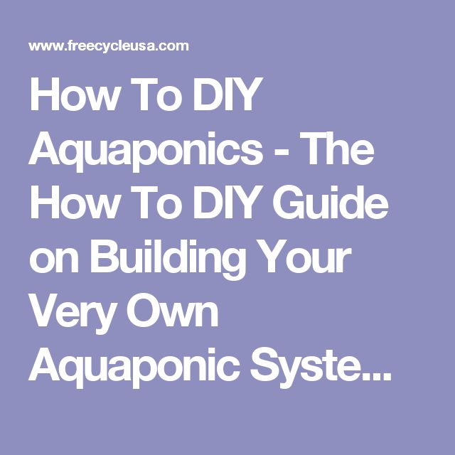 How To DIY Aquaponics - The How To DIY Guide on Building Your Very Own Aquaponic System - FREECYCLE