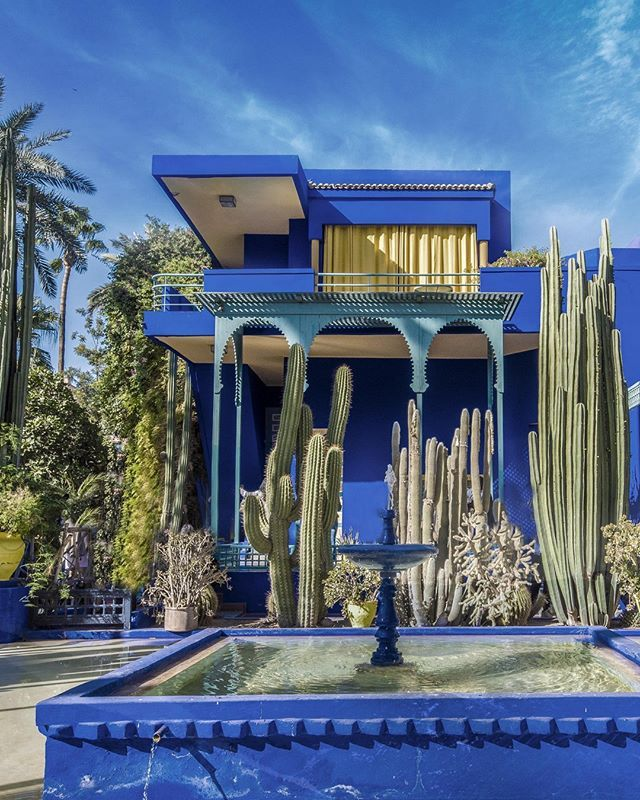 A Moment To Appreciate The Majestic Jardin Majorelle Morocco The