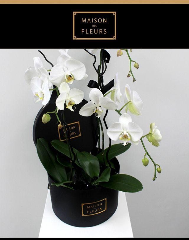 New place to love: Maison Des Fleurs | Buro 24/7