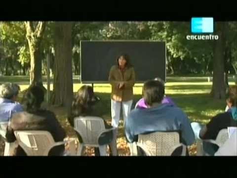 Curso de huerta Orgánica - 9 (Cuidados y mantenimiento de la huerta) 1 - YouTube
