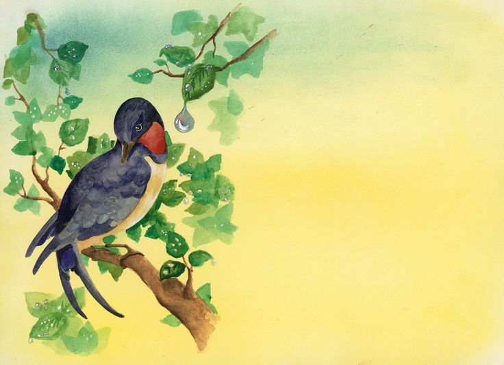 Les fabliaux des Animaux - La laie et l'hirondelle - Illustré par Clara Vialletelle - Le journal de Fanette et Filipin N°16