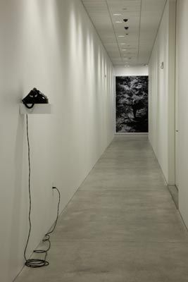 Janet Cardiff | I Was A Blonde Man | 2010
