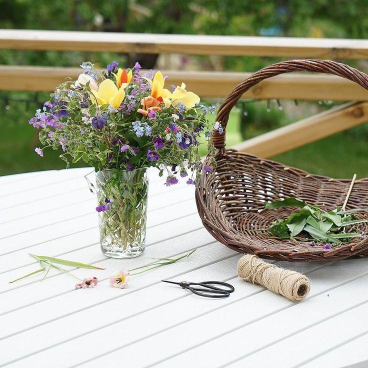 Grattis alla mammor på Mors dag! Hoppas ni fått en underbar helg. Här avslutas den med att plocka ihop en vacker bukett med fina blommor från trädgården till lilla mamma.  #morsdag #morsdagsbukett #morsdagspresent #mothersday #morsdag2017 #wexthuset #lantliv #växter #trädgård #trädgårdsinspiration #trädgårdsglädje #odlingslycka #växthusliv #flowergarden #livewithflowers #inspiration #diy #mothernature #modernatur #snittblommor