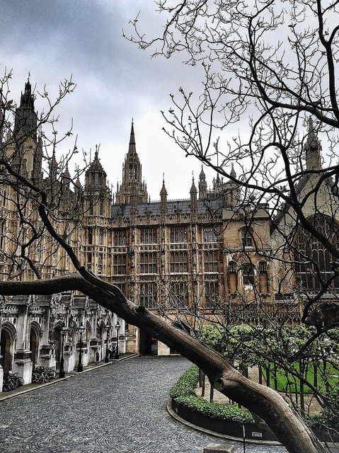 Houses of Parliament - London  | by © Patty Paine