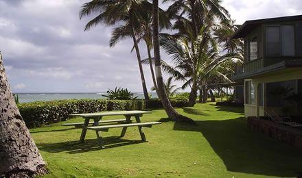 Punaluu Beach Cottage & Oceanview Condo - Oahu Vacation Rental north shore