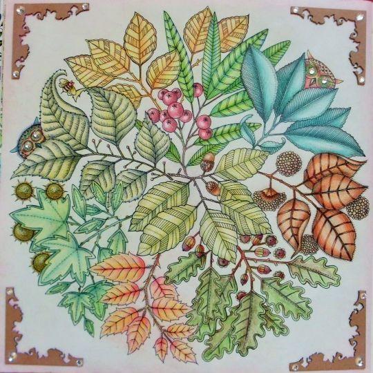 303dea417735ad3899ee9515045400e0 540x540 Pixels Secret Garden ColouringColouring