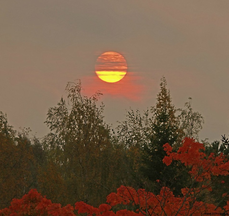 Picture of the day September 27th 2012: dawn of a rainy Autumn day!