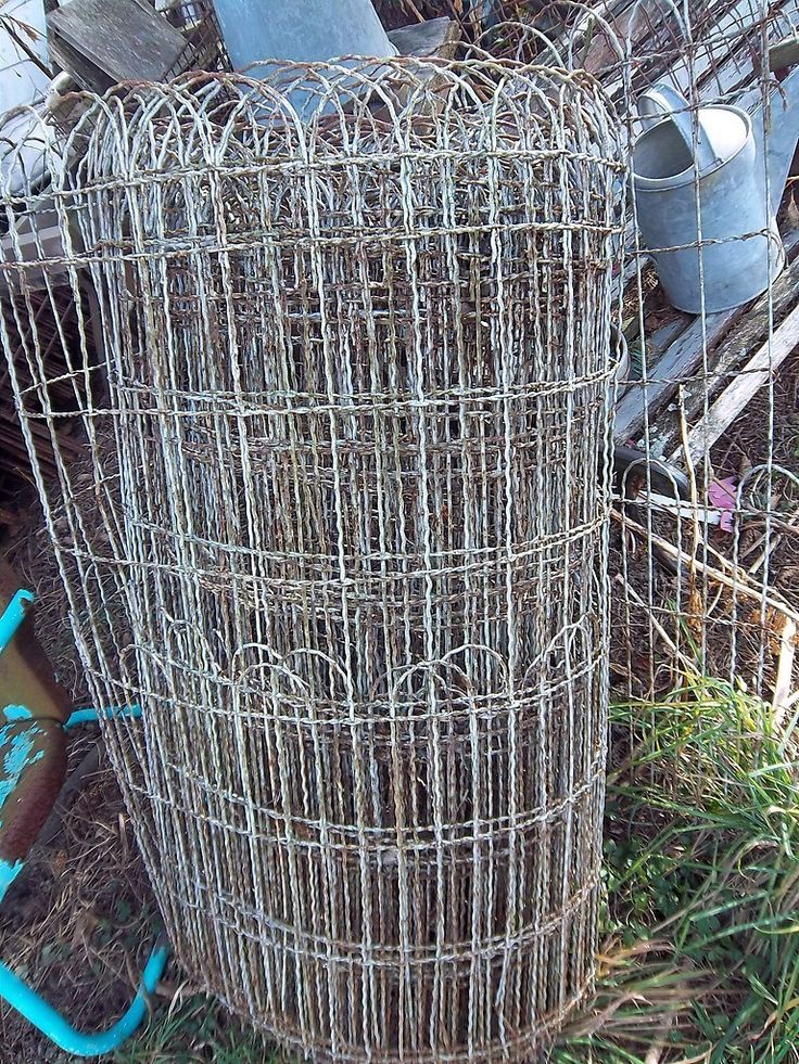 Old fashioned yard ornamental wire fencing