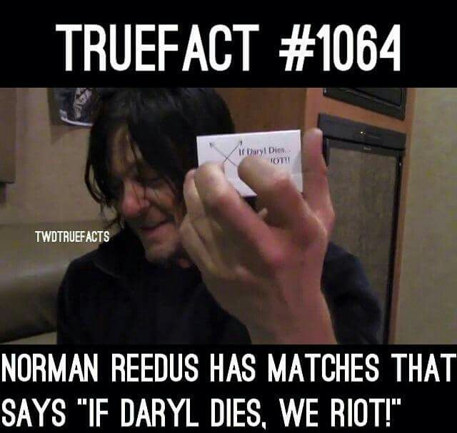 """Norman has """"If Daryl dies, we riot"""" matches"""