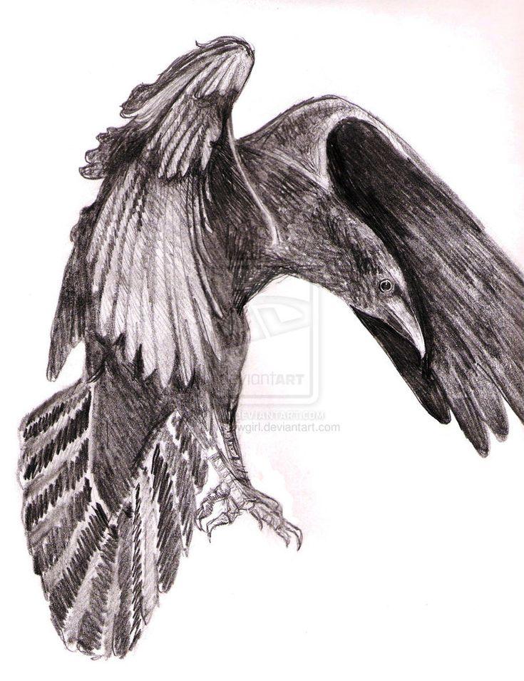 Raven Viking Tattoo: Odin's Ravens Tattoo - Google Search
