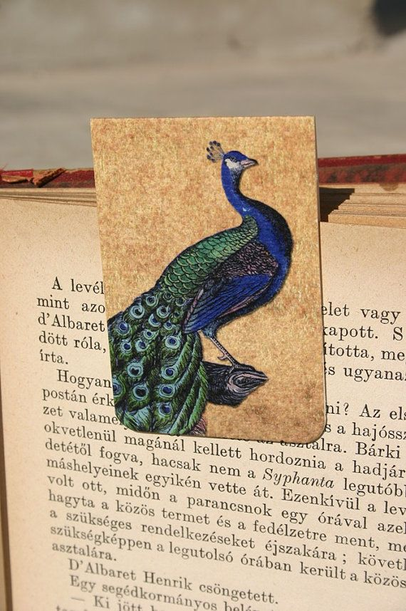 Magnetic bookmarkPeacock bookmark bird cage by GuBoArtBook on Etsy