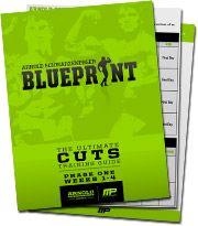 28 best workout programs images on pinterest exercise routines arnold schwarzeneggers blueprint to cut arnold blueprintworkout programstraining malvernweather Images