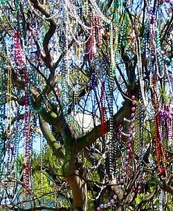 Beads in a tree at Mardi Gras, New Orleans www.gypsynester.c…