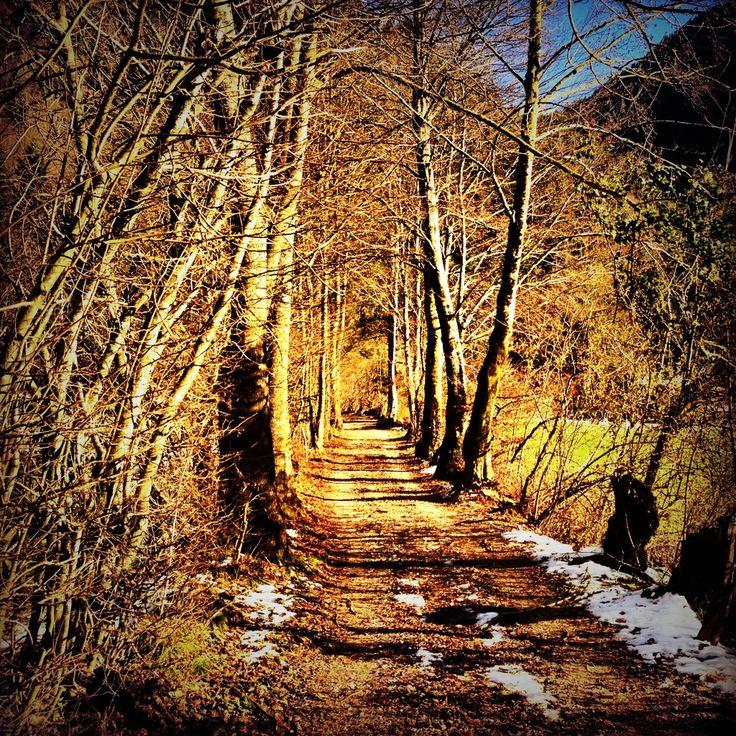 Passeggiando in #Val #Concei