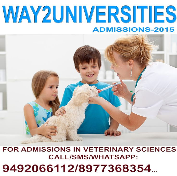 Veterinary course,bvsc admissions,bachelor of veterinary science admissions