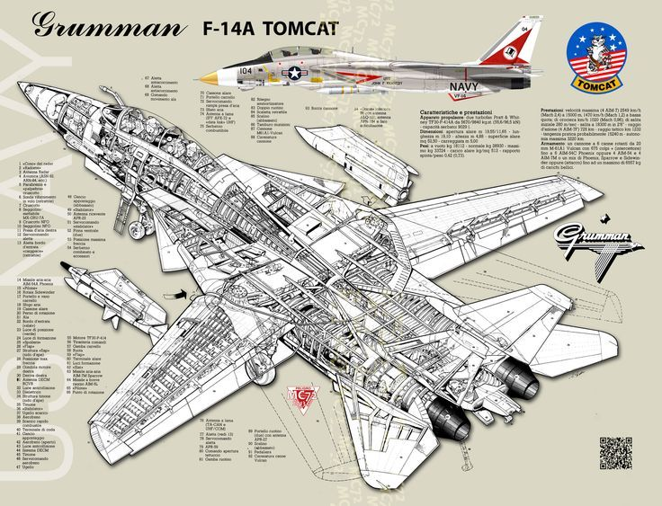 F-14 CUTAWAY 1