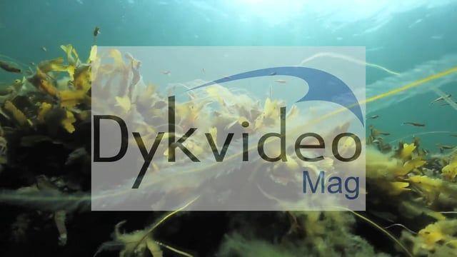 KOMMER SNART - Det nye DykvideoMag hvor der vil være film, historier og reportagerfra dykkeruddannelser, dykkersteder, biologi - flora og fauna, dykkerrejser og andet godt som vrag, grej og med fokus på miljø og plastik i vores farvande.