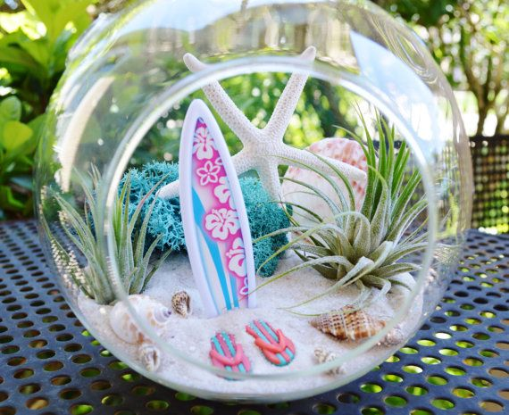 Surfboard Beach Terrarium Kit ~ 6″ Medium Air Plant Terrarium Kit ~ Coastal Living Beach Decor ~ Beach Decor ~ Flip Flops ~ Gift Idea