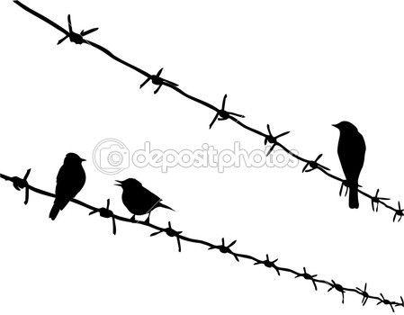 Vector trois oiseaux silhouette de fil de fer barbelé