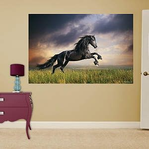 Stormy Skies Horse Mural Fathead Real Big Wall Graphics - Visit our website at www.crystalcreekdecor.com for more sizes and selections on Western Decor at great prices!  Also be sure to join our mailing list for upcoming offers, new products and special package deals.