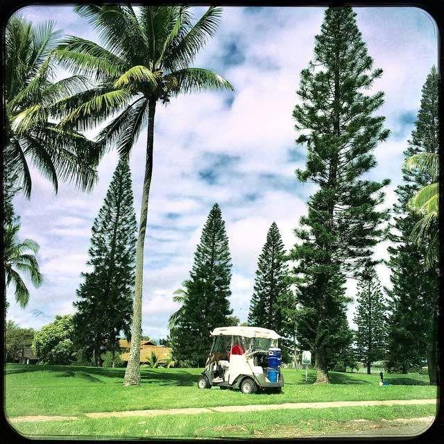 Upcountry Maui 96768 new MLS listings, pics